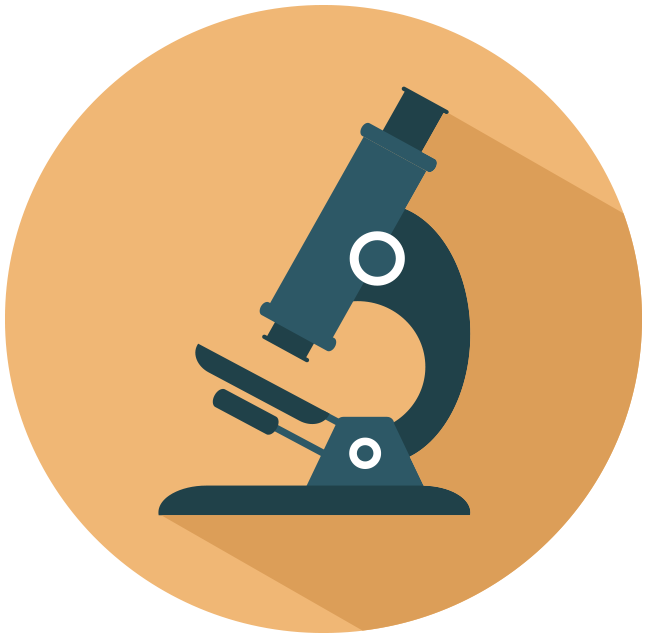 focus - microscope image